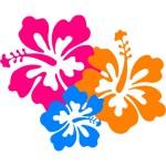 hawaii-clipart-hawaii-hibiscus